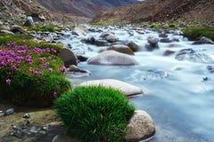 Естественный ландшафт в Leh Ladakh Стоковое Изображение