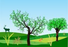 Естественный ландшафт Стоковая Фотография RF