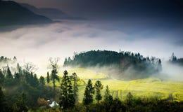 Естественный ландшафт Стоковая Фотография