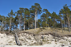 Естественный берег размывания Стоковое Изображение RF