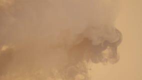 Естественный белый дым Стоковые Изображения