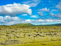 Естественный взгляд горы и поле мха покрыли утес лавы Стоковые Фото