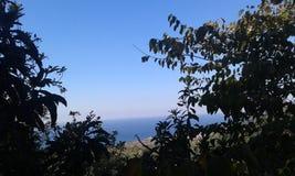 Естественный взгляд Стоковое Фото