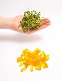 Естественный витамин против дополнений Здоровое питание Стоковые Изображения