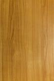 Естественный деревянный цвет Стоковое фото RF