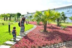 Естественный завод с родителем и ребенком Стоковые Изображения