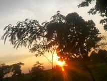 естественный заход солнца стоковая фотография rf