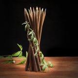 естественный карандаш Стоковая Фотография