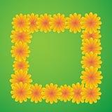 Естественный квадрат с цветками Стоковое Фото