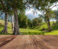 Естественный ландшафт леса в утре с деревянным столом, для предпосылки стоковые изображения