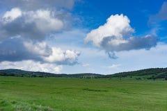 Естественный ландшафт при зеленое поле покрытое с травой под голубым небом с облаками Стоковое Изображение RF