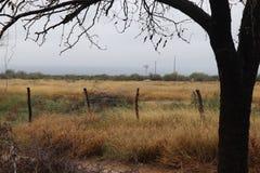 Естественный ландшафт рамки Стоковое фото RF