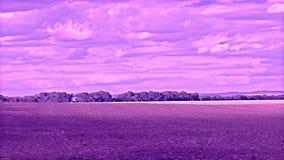 Естественный ландшафт фильтр ультрафиолетова pantone †поля лета « видеоматериал