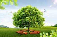 Естественный ландшафт. экологическая принципиальная схема Стоковые Фотографии RF