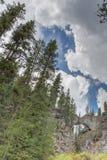 Естественный национальный парк Йеллоустон моста стоковое фото rf