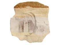 Естественный образец наслоенного известняка с слоем песчаника на белой предпосылке Стоковая Фотография