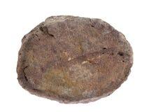 Естественный образец nodule фосфорита разделил с зернами glauconite на белой предпосылке Стоковая Фотография RF
