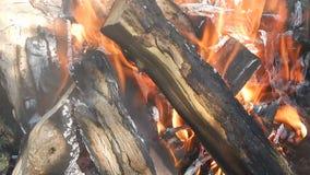 Естественный огонь огня, предпосылка, пламя, текстура сток-видео
