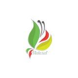 Естественный логотип лист Стоковые Фото