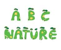 Естественный пакет значка Стоковые Изображения