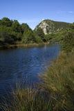 естественный парк стоковое изображение rf