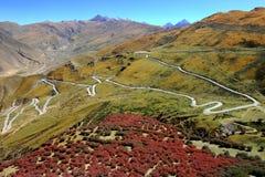 естественный пейзаж Тибет Стоковые Изображения RF