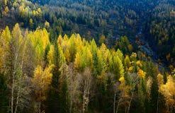 Естественный пейзаж Стоковое Изображение RF