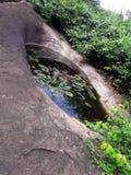 естественный пруд Стоковые Изображения
