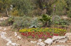 Естественный смотря цветочный сад с акцентами утеса стоковое фото rf