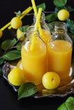 Естественный сок сливы Стоковое фото RF
