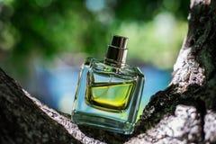 Естественный дух на зеленой предпосылке Стоковая Фотография
