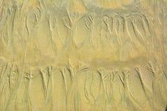 Естественный цветочный узор песка на плоском песчаном пляже во время малой воды Стоковая Фотография RF