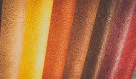 Естественный variegated кожаный крупный план предпосылки Стоковое фото RF