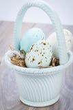 3 естественных голубых пасхального яйца в корзине Стоковое фото RF