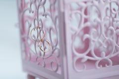 лестницы портрета платья принципиальной схемы невесты wedding Стоковые Фотографии RF