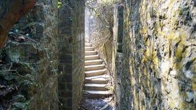 лестницы солнечные Стоковое Изображение RF