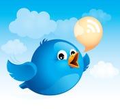 летание птицы голубое Стоковое фото RF