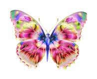 детали конструкции проверки бабочки больше много моей серии портфолио подобной Стоковые Изображения
