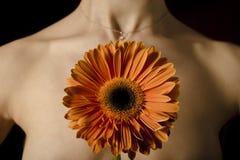 детеныши венка искусственного красивейшего яркого цветастого творческого состава девушки цветка пера eyeshadow ресниц длиннего но Стоковые Изображения RF