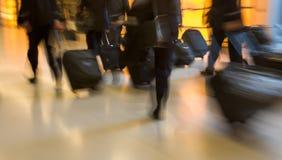 детеныши женщины перемещения пущи дела осени Стоковые Фото