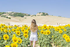 детеныши женщины солнцецветов поля Стоковое Фото