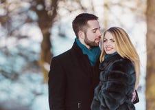 детеныши зимы парка пар Стоковые Фото
