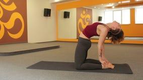 детеныши йоги девушки практикуя видеоматериал