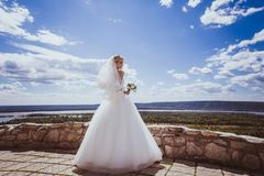 детеныши платья невесты wedding белые стоковое изображение