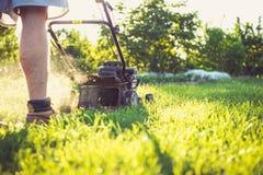 детеныши человека травы кося Стоковое Изображение RF