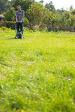 детеныши человека травы кося Стоковые Фото