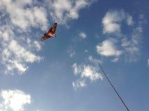 летите высоко Стоковые Изображения