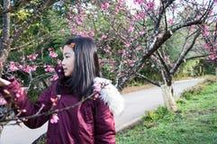 дети принимают внешний портрет под дерево Сакуры Стоковые Фотографии RF