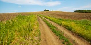 лето ландшафта дня русское солнечное Путь среди полей Стоковое Изображение