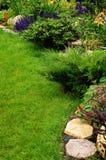 лето ландшафта предпосылки красивейшее голубое Стоковые Изображения RF